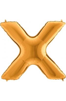 Literka X